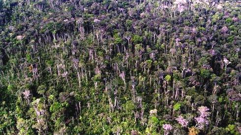 Tempestade na Amazônia 2005