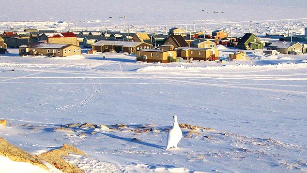 Povoado de igloolik, situado no artico canadense
